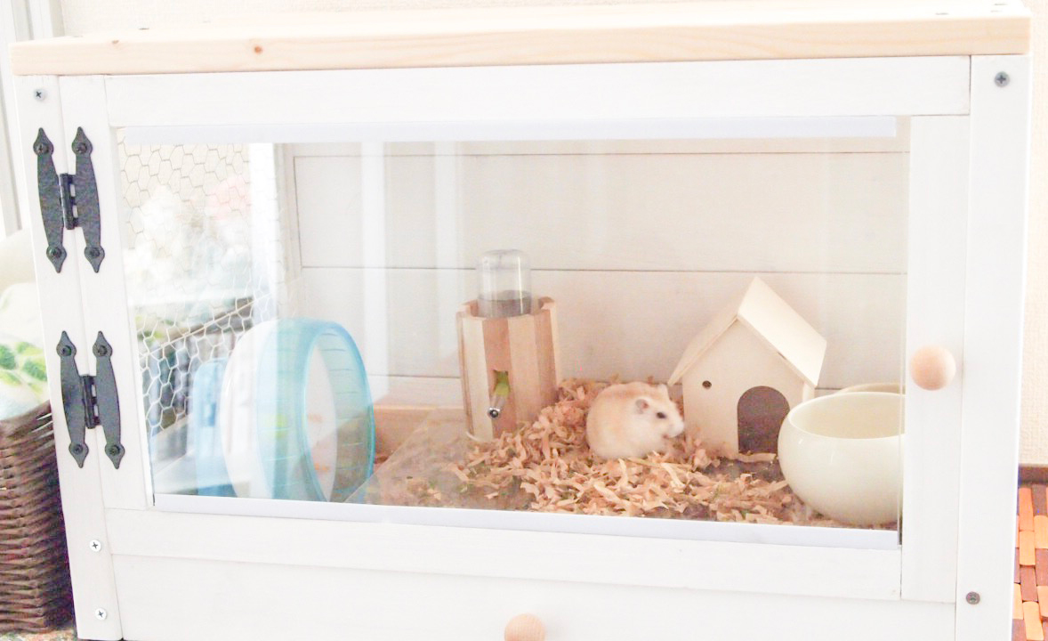 ハムスターの部屋掃除!巣箱の掃除方法とポイント・注意点を解説